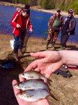 woodmarc рыболовный клуб